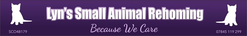 Lyn's Small Animal Re-Homing Service in The Howgate, Falkirk